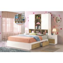 Franzer Bed Frame (Queen Size)