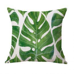 Greenhouse Cushion