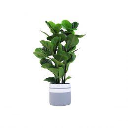 Lorna Flowerpot