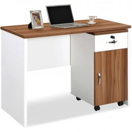 Pauline Study Desk with Pedestal
