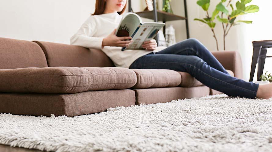Frau Anese Floor Sofa Bed