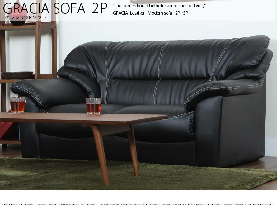 The Gracia 2 Seater Leather Sofa's front view in a modern living room.